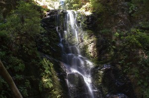 Berry Creek Falls offer a nice place to sit and rest.